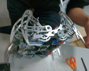 Spider robot